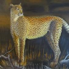 Leopard_prev